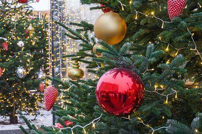 Волгоградцы встретят Новый год без холода и снега