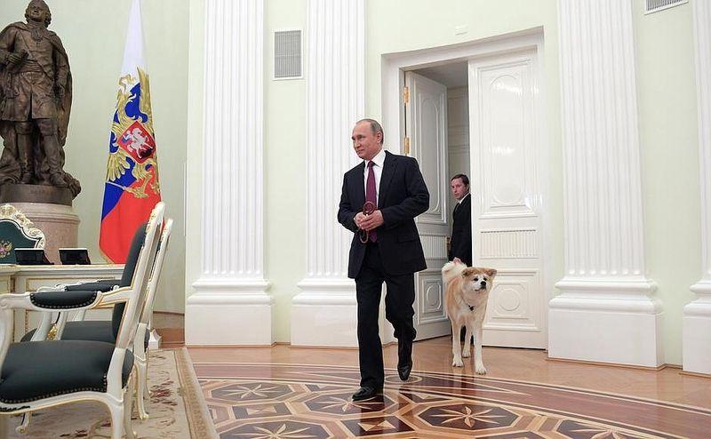 На встречу с японскими журналистами Владимир Путин взял свою собаку