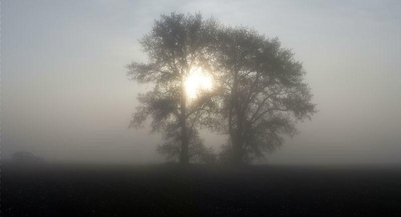 Нулевая температура и туман продержатся в Волгограде все выходные
