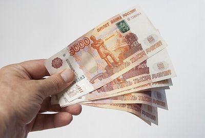 Под Волгоградом директор предприятия 5 лет не платила зарплату подчинённым