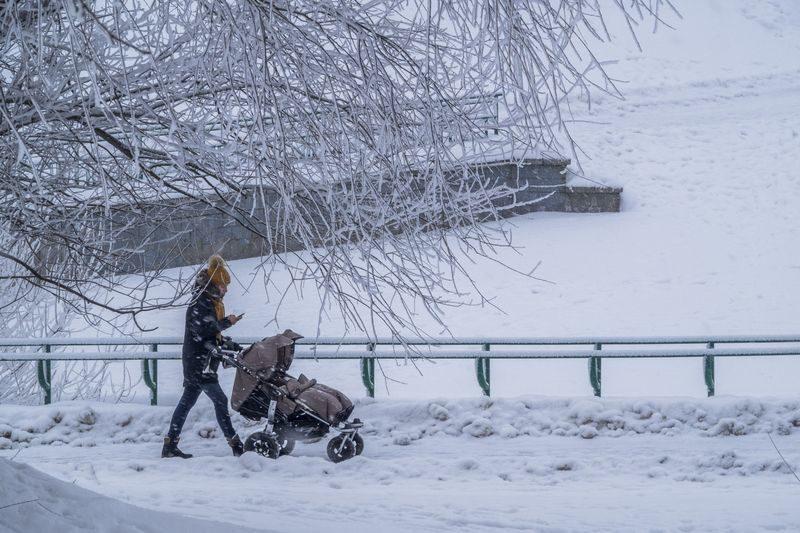 В Волгограде начало недели будет морозным