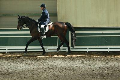 В конном клубе лошадь раздавила полицейского