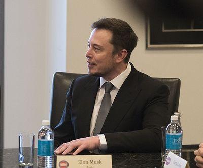 Миллиардер Илон Маск включил Волгоград в схему