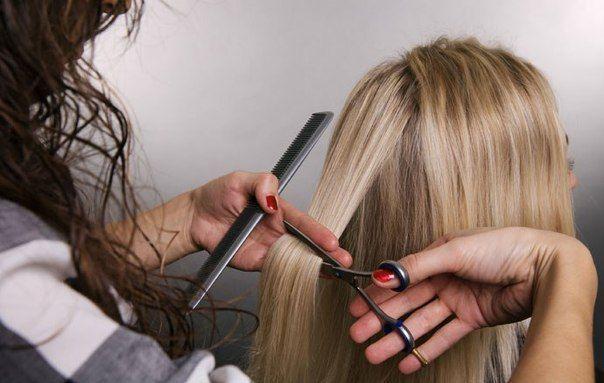 Идея для бизнеса: парикхмахерская на дому