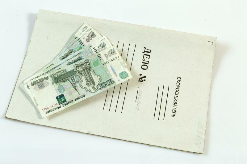 Волгоградский фермер незаконно получил субсидию в размере 150 тысяч рублей