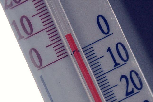 На следующей неделе волгоградцев ждет плюсовая температура