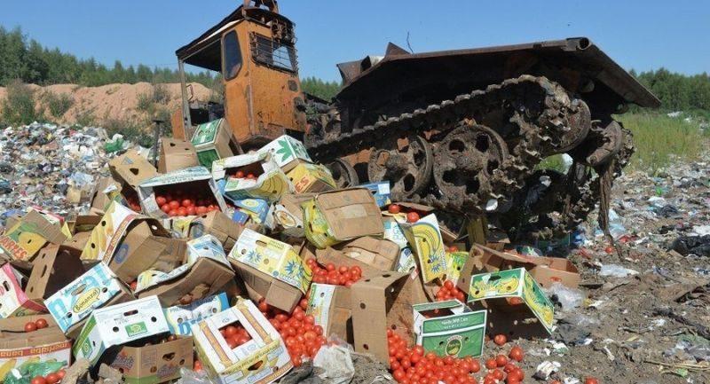 Отклонен законопроект о бесплатной раздаче санкционной еды