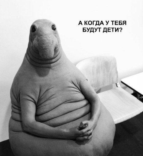 Интернет-мем Ждун