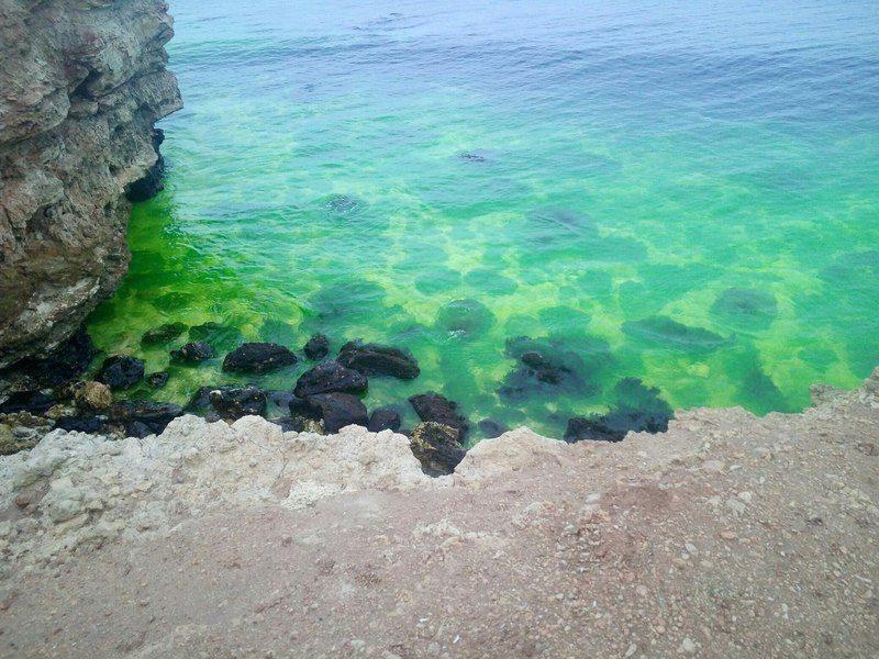 Море в Севастополе окрасилось в ярко-зеленый цвет