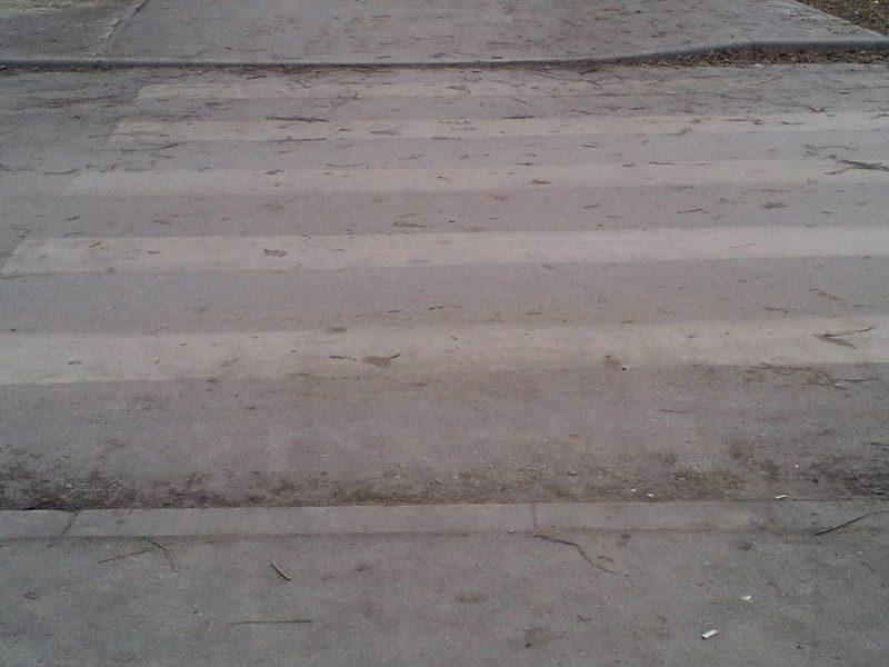 В центре Волгограда водитель оставил на дорогу сбитую им девушку
