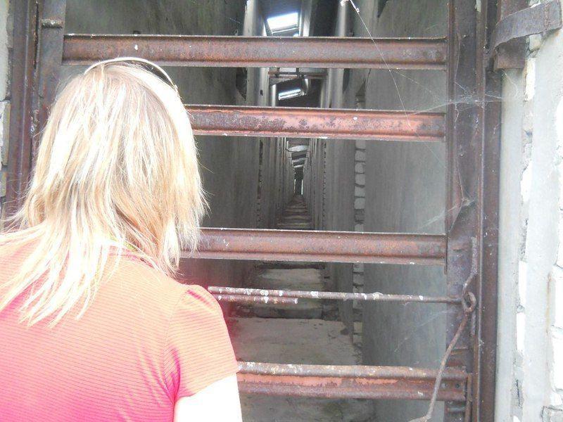 Волгоградский волонтер рассказала, как ведутся поиски пропавших
