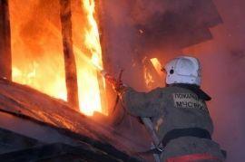 За сутки от пожаров в Волгоградской области погибли 2 человека