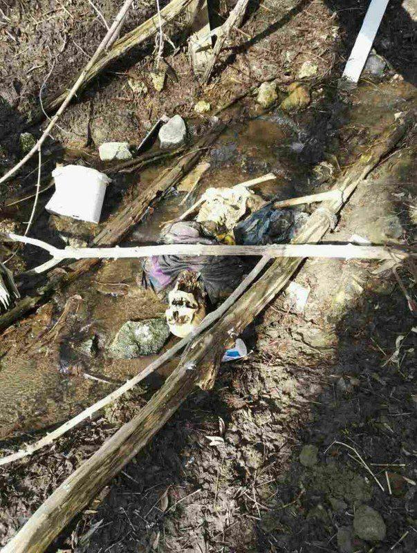 В пойме реки Царица был найден скелет человека