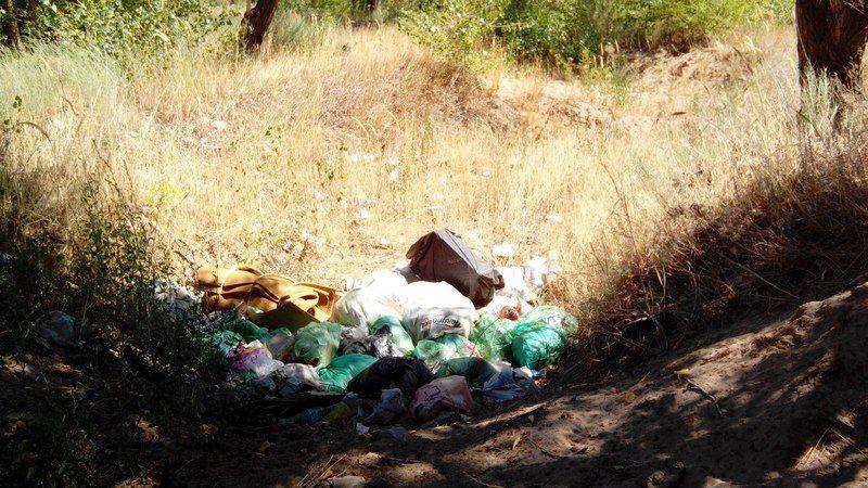 Волгоградец призвал горожан не мусорить
