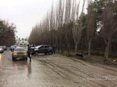 В Михайловке внедорожник врезался в дерево: пострадала женщина-водитель и 12-летний пассажир
