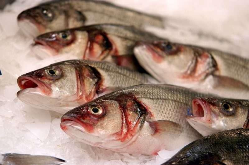 Руководство детского сада кормило детей опасной рыбой