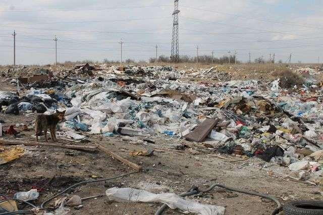 В Городищенском районе обнаружили еще одну незаконную свалку