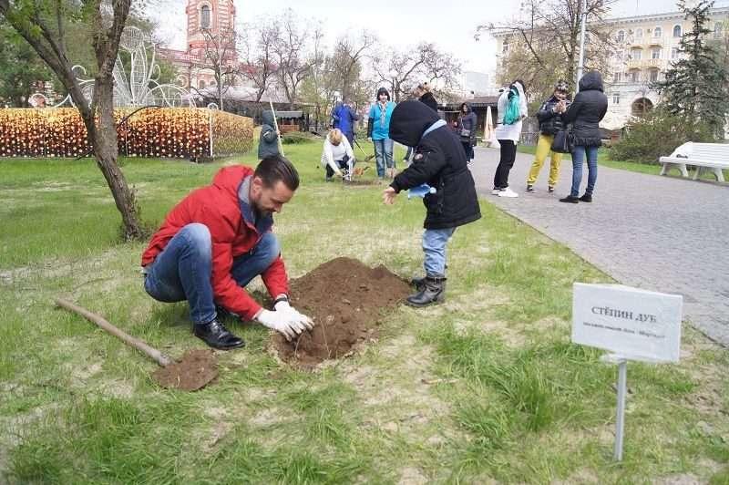 В Волгограде стало на сто дубов больше