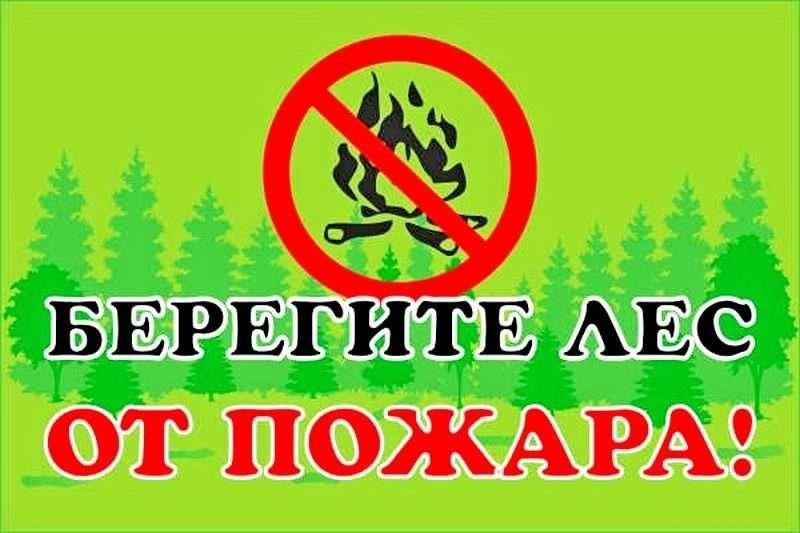 Волгоградцев предупреждают о запрете разводить костры на природе