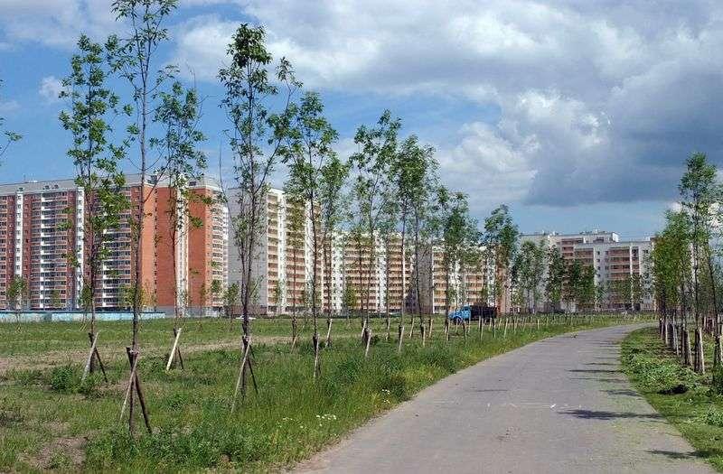 В Волгограде управляющая компания выбрала сама себя