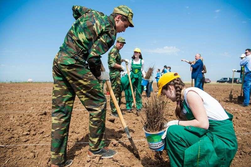 В Волгограде высадят деревья в виде цифр «2018»