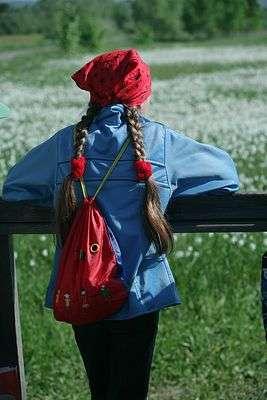 Волгоградская школьница угодила под колеса иномарки