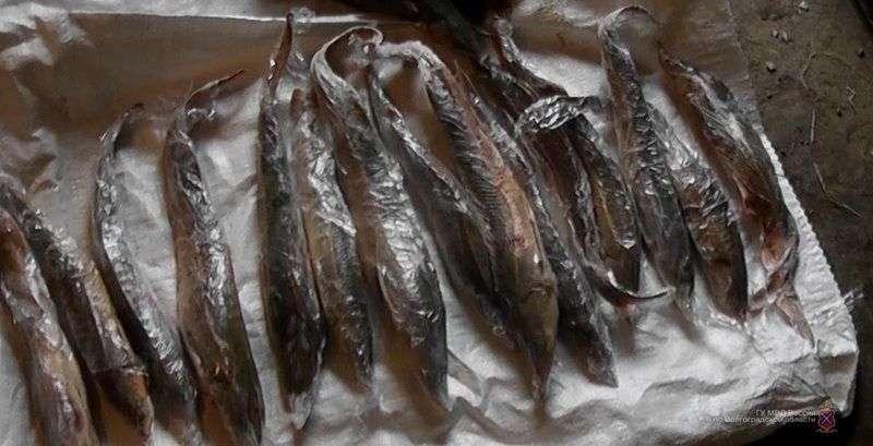 Житель Астраханской области наладил в Волгограде сбыт незаконно добытой рыбы