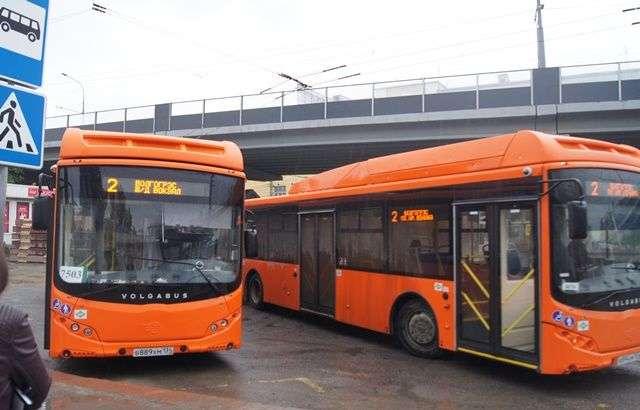 В Волгограде еще двадцать автобусов вышли на дороги