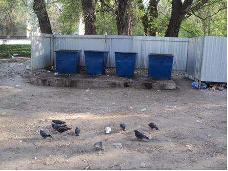 В Волгограде усилили контроль за мусорными площадками