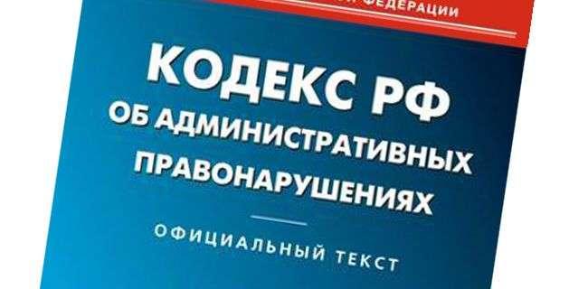 В Волгограде за неделю в отношении мусороперевозчиков составили более 30 протоколов