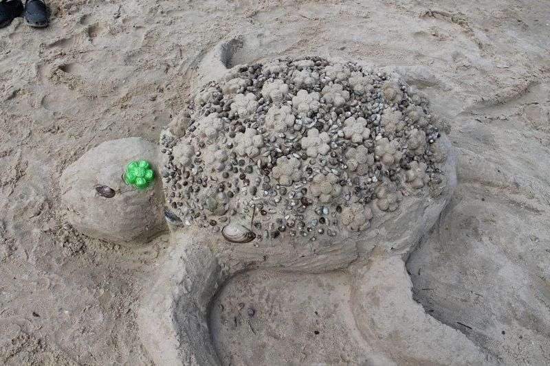 Волгоградцев приглашают лепить фигуры из песка