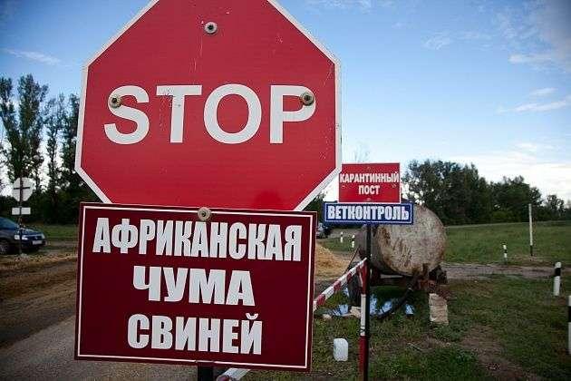 В Городищенском районе зафиксировали случай АЧС