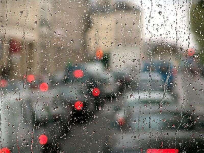 В Волгограде в конце недели будет дождливо и прохладно