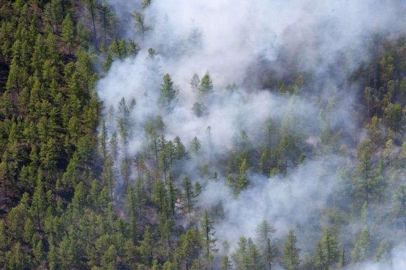 В Волгоградской области ожидается высокая пожароопасность