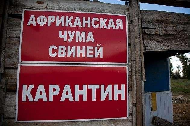 На острове Сарпинском зафиксировали АЧС