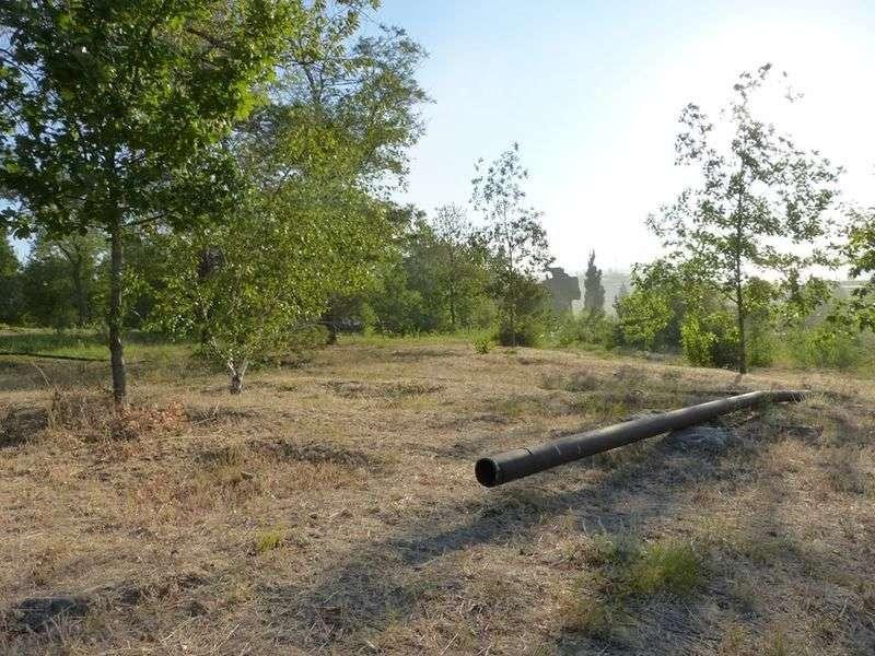Волгоградские общественники рассказали о сухих зонах Мамаева кургана