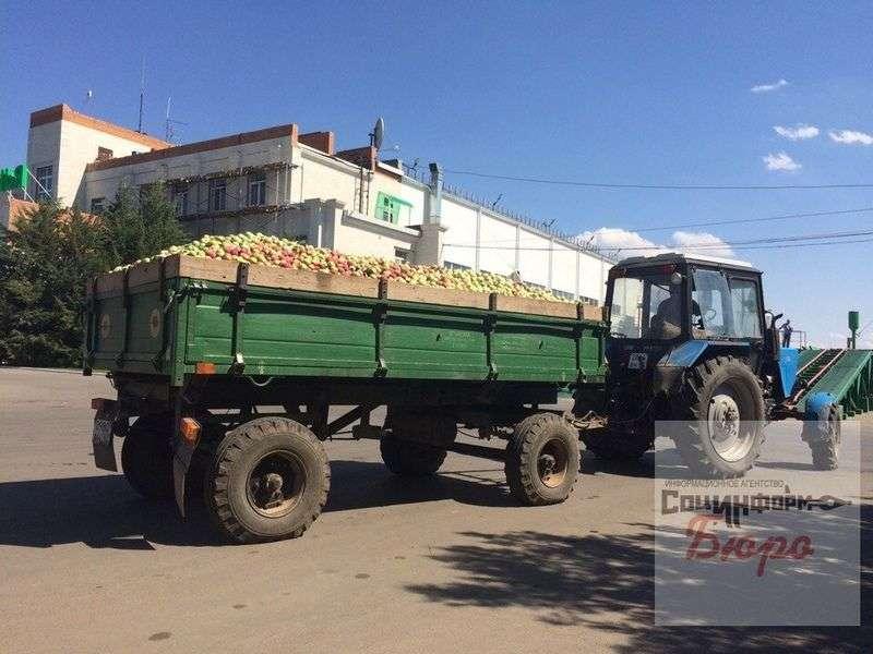 В Волгоградской области Александр Ткачев провел совещание по проблемам садоводства в стране