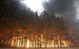 Из-за пожаров волгоградцев призывают к бдительности