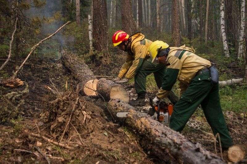 В Волгоградскую область для тушения пожаров прибудут парашютисты-десантники