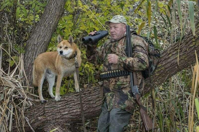 В Волгоградской области охоту на дичь отложили до конца сентября
