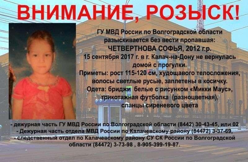 Под Волгоградом 5-летнюю девочку ищут волонтеры и местные жители