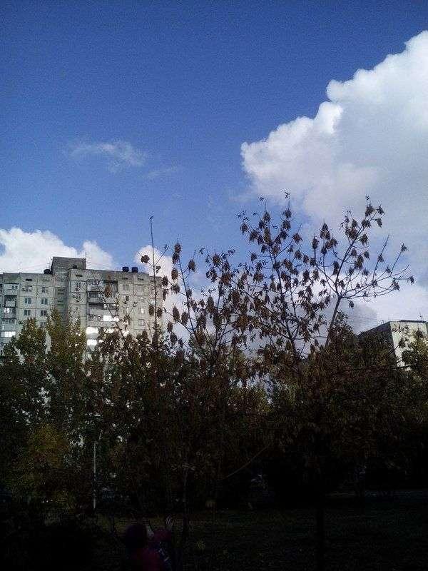 В Волгограде 19 октября будет самым теплым днем осени
