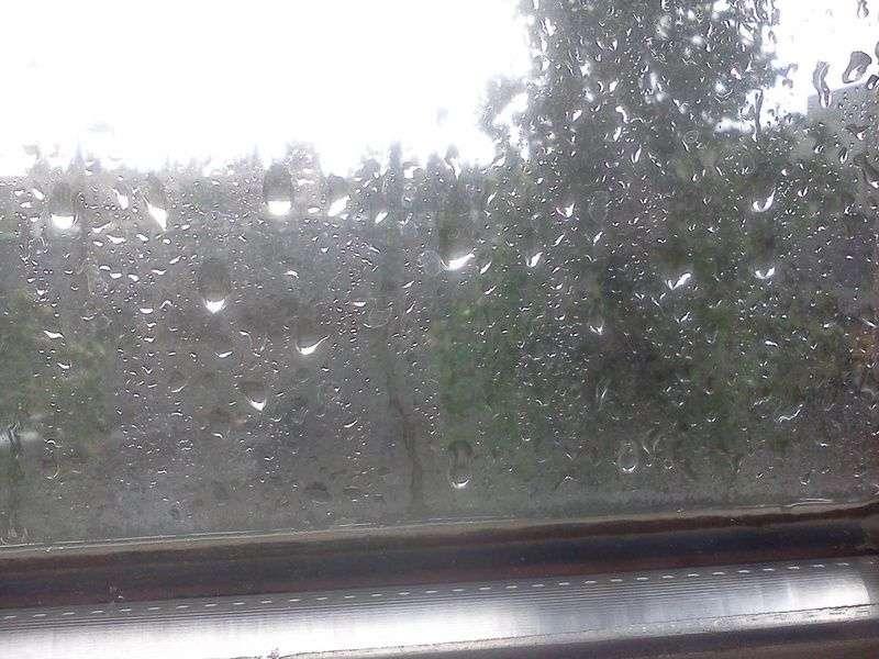 Грозы и шквалистый ветер обрушатся на Волгоградскую область