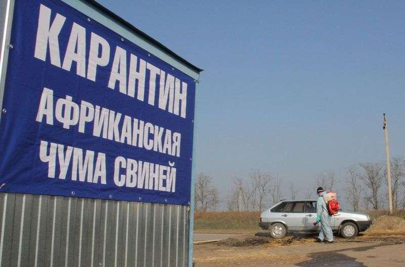 Вокруг двух поселков Волгоградской области введен карантин по АЧС