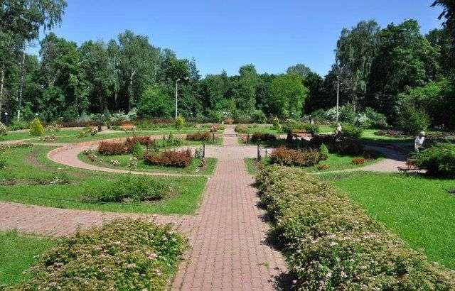 В Волгограде подвели итоги народного голосования за лучший парк города