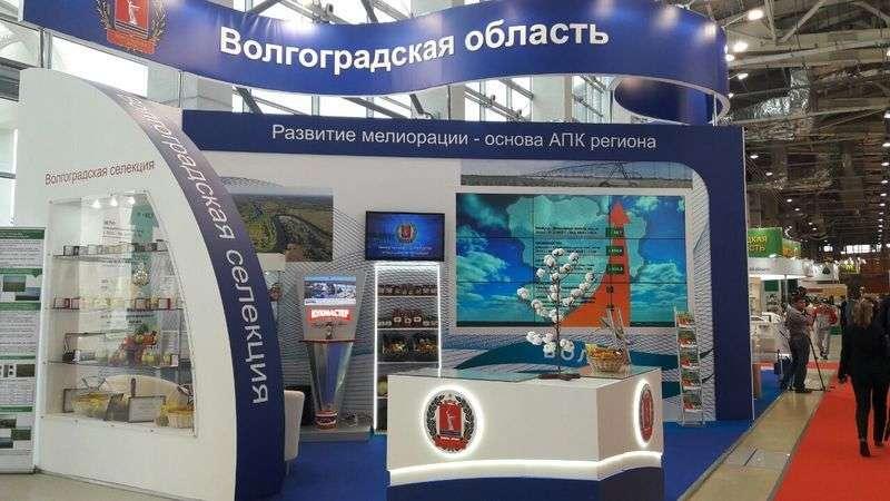 Волгоградская область вошла в «Золотую осень-2017»