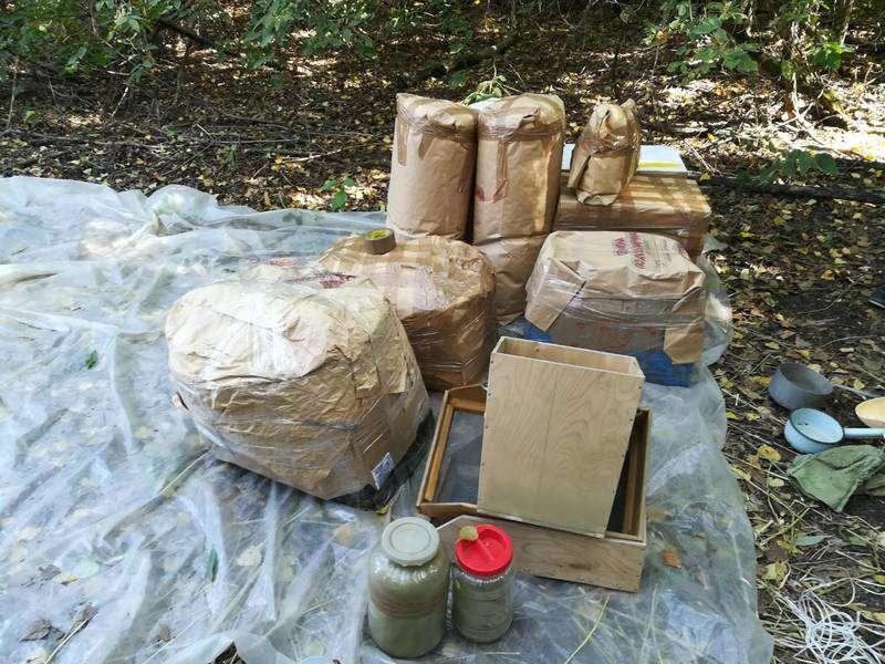 Под Волгоградом нашли 180 килограммов каннабиса