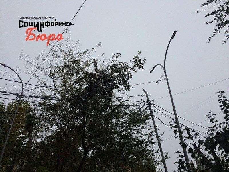 Волгоградский свет станет концессионным