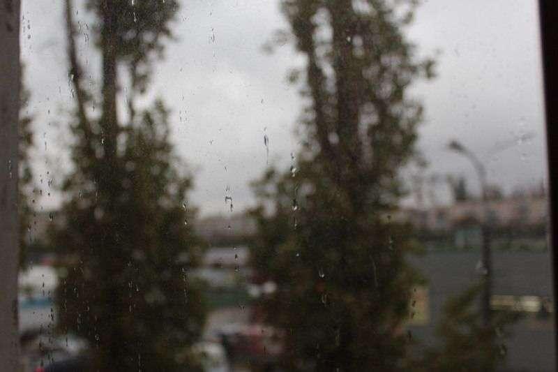 Волгоградскую область накроют дожди со снегом