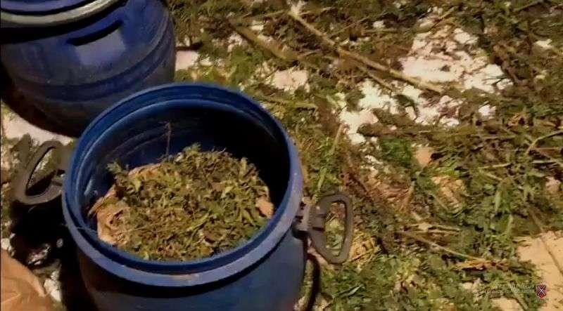 У жителя Михайловки изъяли более 42 килограммов наркотика